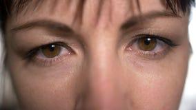 Cierre encima de la mujer marrón de los ojos que mira derecho en la cámara, mirada abierta, maquillaje natural foto de archivo libre de regalías