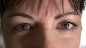 Cierre encima de la mujer marrón de los ojos que mira derecho en la cámara, mirada abierta, maquillaje natural fotografía de archivo libre de regalías