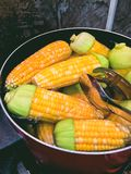 Cierre encima del maíz hervido fotos de archivo