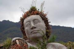 Cierre espectacular encima de en Tenerife de las mujeres de la flor fotografía de archivo