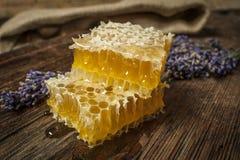 Cierre fresco de la miel para arriba Foto de archivo libre de regalías