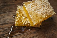 Cierre fresco de la miel para arriba Foto de archivo