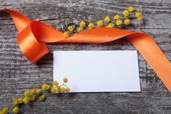 Cierre fresco de la mimosa de la primavera para arriba con la tarjeta y la naranja blancas de visita Fotos de archivo libres de regalías