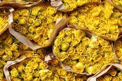 Rosa del amarillo Imagen de archivo libre de regalías