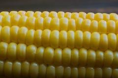 Cierre fresco dulce del maíz para arriba fotos de archivo