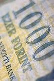 Cierre húngaro del dinero para arriba Imágenes de archivo libres de regalías