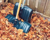 Cierre hermoso encima del tiro de la imagen con las hojas de arce secas amarillas coloridas de la caída del otoño en la tierra en Fotografía de archivo libre de regalías