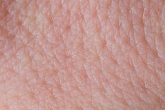 Cierre humano de la textura de la piel para arriba Macro de la piel limpia marrón de la persona joven foto de archivo