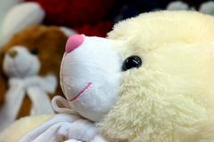 Cierre lindo de la cara del amarillo del oso de peluche de la muñeca para arriba, poca muñeca del oso, foco selectivo del oso de  fotos de archivo