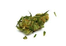 Cierre médico de la marijuana para arriba Imágenes de archivo libres de regalías