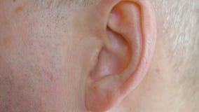 Cierre masculino del oído para arriba Hombre ascendente cercano de la visión que se mueve el oído, parte del cuerpo almacen de metraje de vídeo
