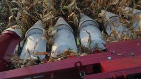 Cierre moderno de la máquina segadora encima de escoger el maíz almacen de video