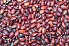 Cierre púrpura orgánico de la haba roja encima de la comida foto de archivo