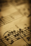 Cierre para arriba de la música de hoja Imagen de archivo libre de regalías