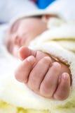 Cierre para arriba de la mano del bebé Imagen de archivo libre de regalías