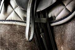 Cierre para arriba de la silla de montar de cuero negra en la parte posterior del caballo Imagen de archivo