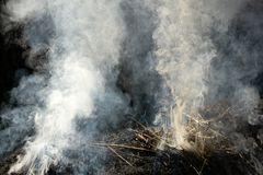 Cierre para arriba la pila ardiendo del fuego de paja del arroz casi completa imágenes de archivo libres de regalías