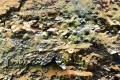 Cierre para arriba la superficie de la pintura colorida rociada en las paredes del hormig?n y del cemento en la alta resoluci?n ilustración del vector