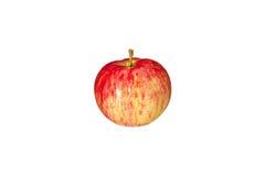 Cierre rayado rojo de la manzana para arriba en un fondo blanco Imágenes de archivo libres de regalías