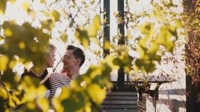 Cierre romántico pacífico de la sentada de los pares de la cámara lenta junto en un banco de parque del otoño y planes y sueños e almacen de video