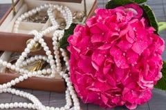 Cierre rosado de la caja de las flores y del jawel del hortensia para arriba Foto de archivo