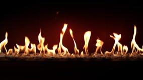 Cierre satisfactorio precioso magnífico de la atmósfera para arriba en el carbón de leña que quema lento con la llama anaranjada  almacen de video
