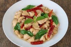 Cierre tailandés del pollo de la albahaca para arriba fotos de archivo