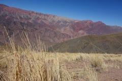 Cierro 14 colores/fjorton färgkulle - humahuaca, nord eller Argentina royaltyfri foto
