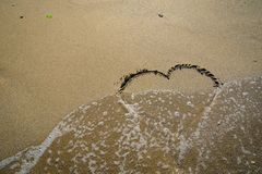Ciervo en la arena lavada por las ondas Imagen de archivo libre de regalías