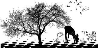 Ciervos 1 Ilustración del Vector