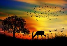 Ciervos aislados en resorte stock de ilustración