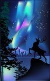Ciervos bajo ilustración de la aurora Fotos de archivo libres de regalías