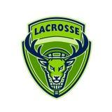 Ciervos Buck Stag Lacrosse Crest ilustración del vector