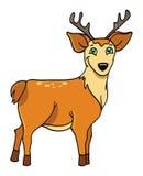 Ciervos con las cornamentas stock de ilustración