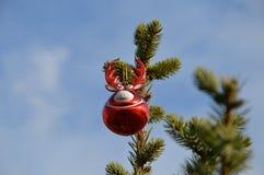 Ciervos de la bola de la decoración para el objeto del árbol de navidad aislado Imagen de archivo