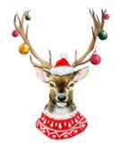 Ciervos de la Navidad de la acuarela Fotografía de archivo libre de regalías