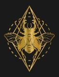 Ciervos de oro del escarabajo y elementos geométricos Imagen de archivo libre de regalías