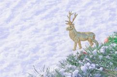 Ciervos de oro en la nieve blanca Imágenes de archivo libres de regalías