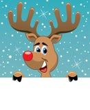 Ciervos de Rudolph que sostienen el papel en blanco Imágenes de archivo libres de regalías