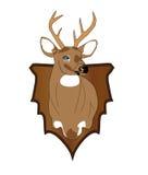 Ciervos de Whitetail Stock de ilustración