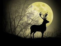 Ciervos debajo de la luna amarilla ilustración del vector