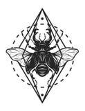 Ciervos del escarabajo y elementos geométricos Imagen de archivo