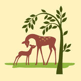 Ciervos en la naturaleza Foto de archivo libre de regalías