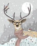 Ciervos lindos del inconformista con la bufanda y los vidrios Noche del invierno Imágenes de archivo libres de regalías