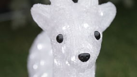 Ciervos luminosos almacen de metraje de vídeo