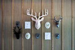 Ciervos principales interiores fotos de archivo