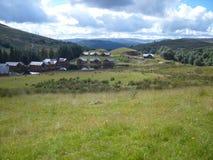 Ciervos y casas de campo imagen de archivo