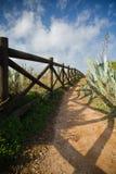 Cieszyć się chodzić na kolorowym przejściu na wypuscie atlantycki wybrzeże z tropikalnymi roślinami Fotografia Stock