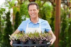 Cieszyć się jego pracę z roślinami Zdjęcia Royalty Free