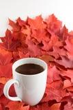 Cieszyć się spadek z filiżanką gorąca czekolada Obraz Royalty Free